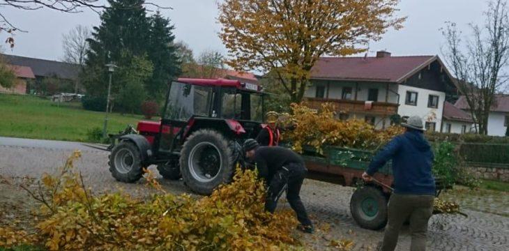 Landjugend kümmerte sich um Dorfplatz-Reinigung