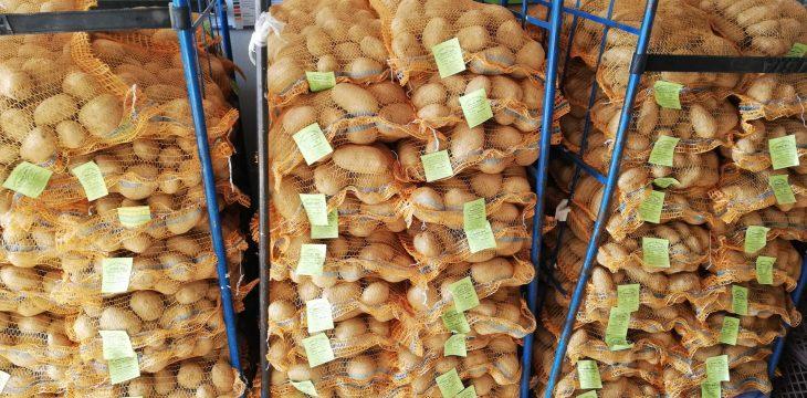 Kartoffeln